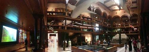 Hawaiian Hall Panorama