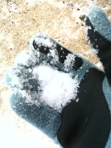 Winter storm 09- 3