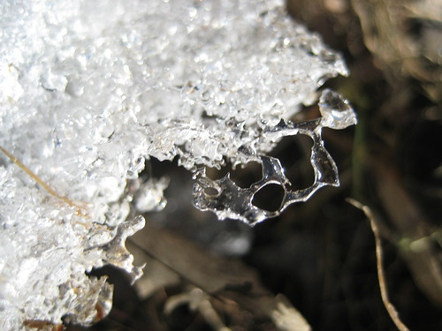 Closeup of ice melting on the shore of Martel Lake.