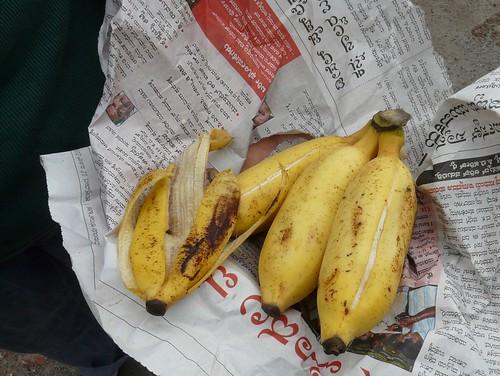 bananas from the coast