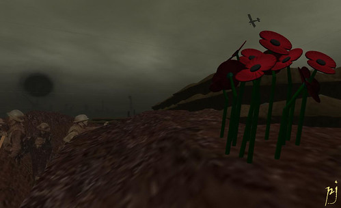 Poppies in the Trenches: Photograph by PJ Trenton