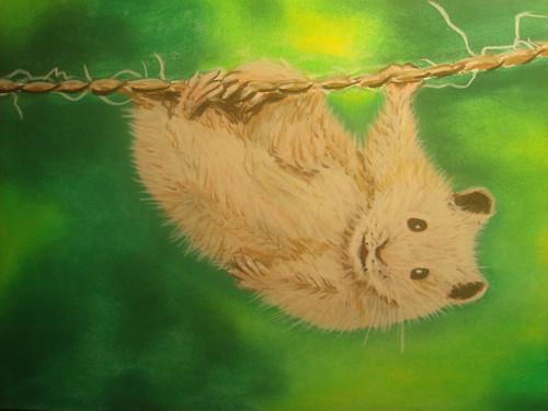 吊在繩子上的老鼠