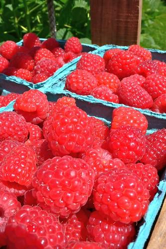 Gorgeous Raspberries