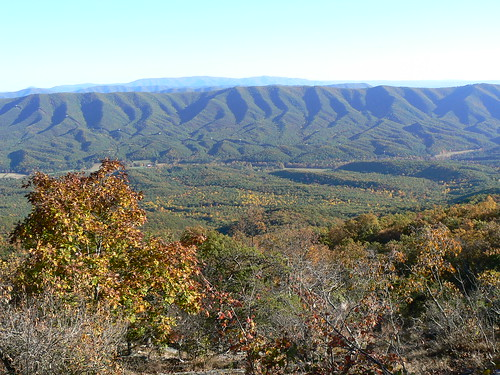 Sinking Creek Mountain - Top -  Changing Leaves in Valley (Landscape)