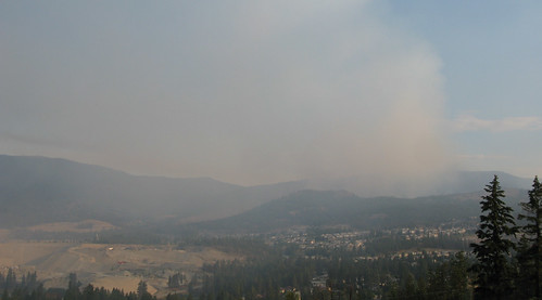 Rose Valley Forest Fire