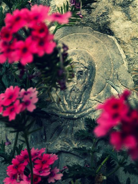Sfântul dintre flori
