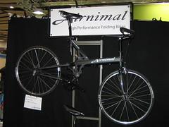 Airminal - I Wanted This!