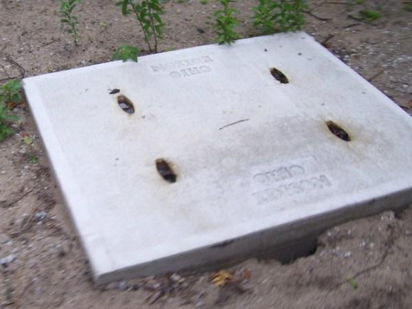 Cedar Point - 2010 Mystery Electric Box