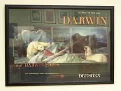 Darwin wall hangings, Whipple Museum, University of Cambridge