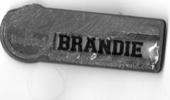 Brandie's Bed Bath & Beyond Name Tag