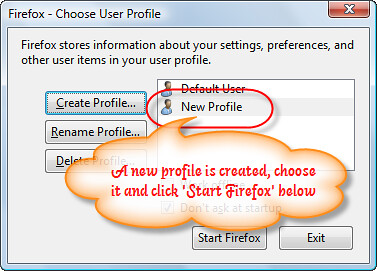 4. Multiple-Firefox-Instance-New-Profile-Created