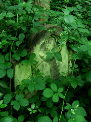 Brambly grave