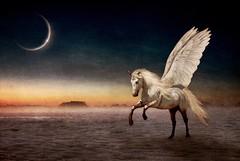 ::Pegasus::