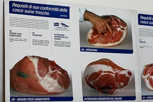 Regulations for non-conforming swine legs (for making Prosciutto di Parma)