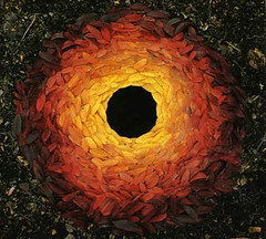 andy_goldsworthy_rowan_leaves_with_hole