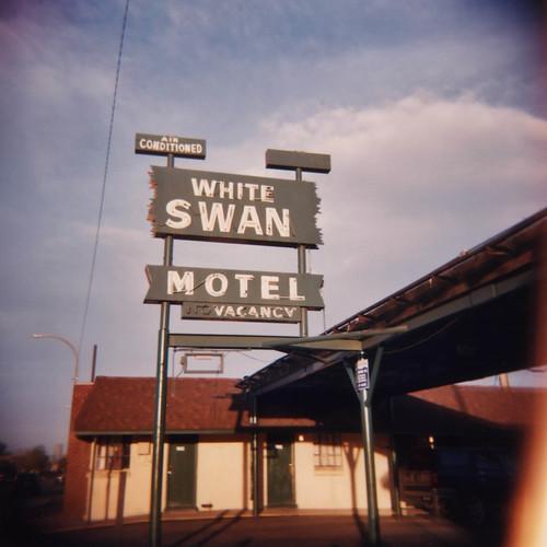 White Swan Motel (Holga)