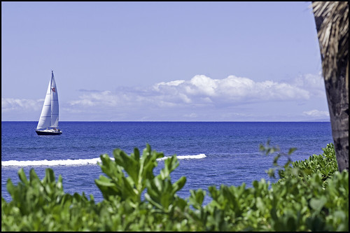 Sail and Surf ~ Project 365/257