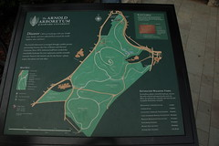 Arnold Arboretum: Map of the grounds at the Ar...