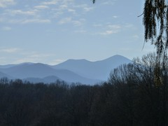 View of the Blue Ridge Mountains from Ashevill...