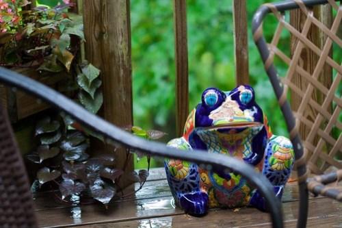 Enjoying a summer rain (from Flickr)