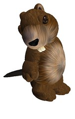 beaver_003crop