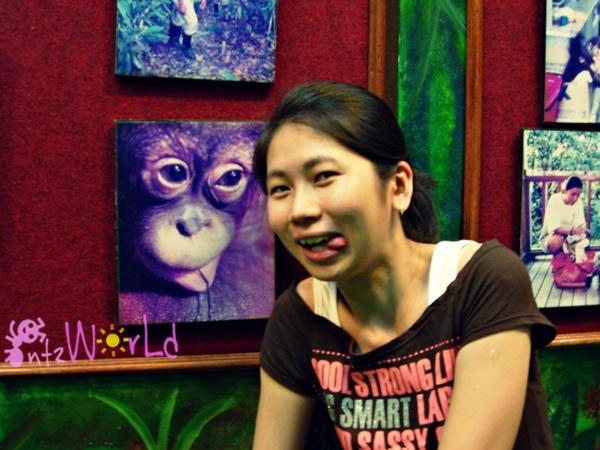 OrangUtan@Sepilok (30)