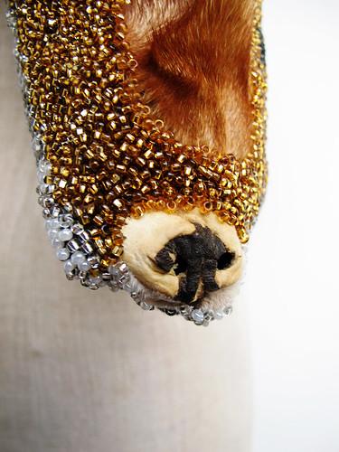 bara baras - fox nose