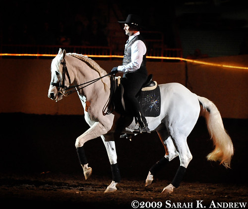 Matt McLaughlin and his 24 year old Andalusian stallion, Corral II