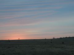 #5 morning sky 23 jan 09