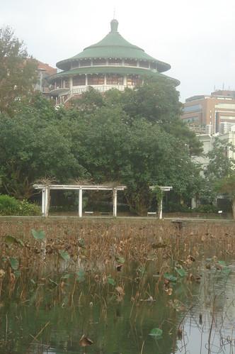 台北植物園 6
