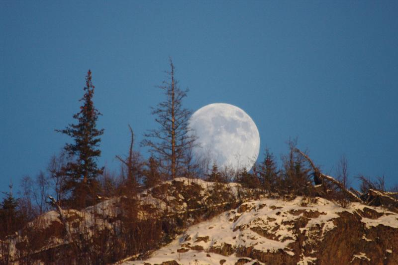 IMGP1765 a Mountain Moonshine
