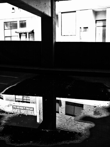 shadow of reflection