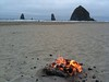 Vacation day 7: beach bonfire