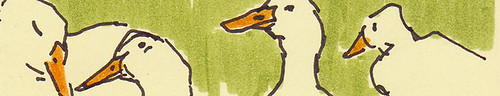 Duck header