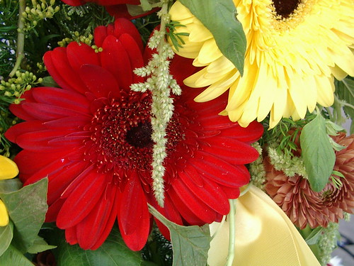 close up heart wreath