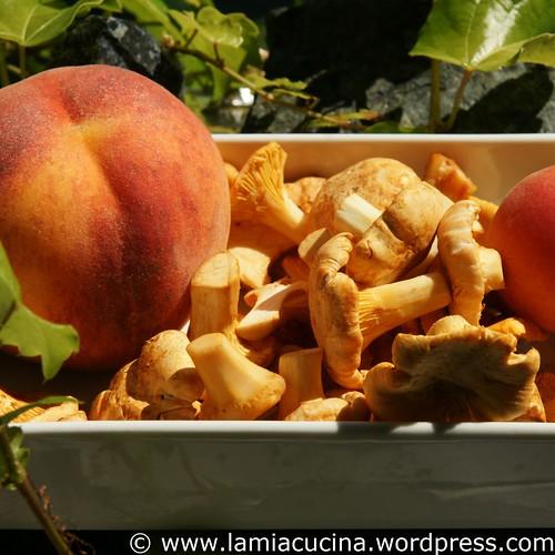 Pfifferlinge und Pfirsiche 1_2009 08 23_2234