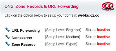 dns, zone record, url forwarding free domain
