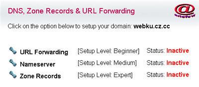 dns, zone record, url forwarding free domain