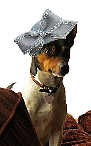 Ruby loves hats