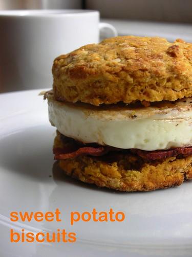 sweet potato bisciuts