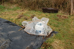 090201-allotment010