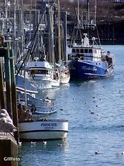 Commercial Fishing Dock by Taku Smokeries