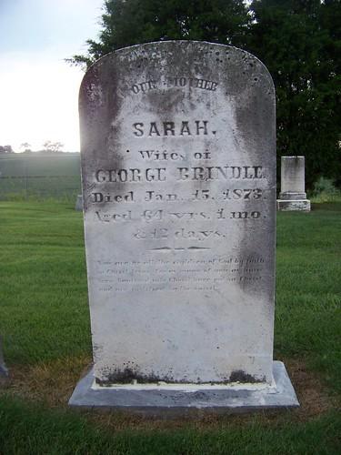 Sarah Brindle