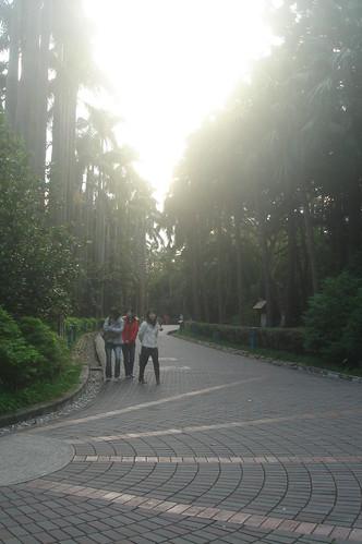 台北植物園 11