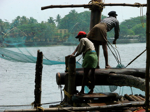 Workers on the Chinese Nets - Old Cochin - Kochi - India