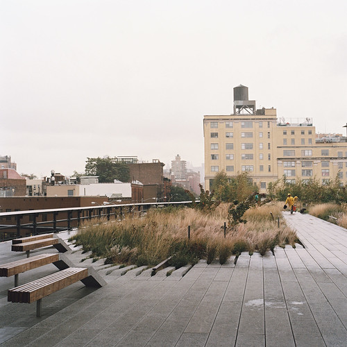 A view along New York's High Line Linear Park