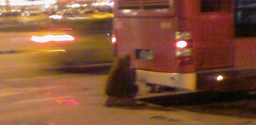 Taksim'de otobüsle ısınmak