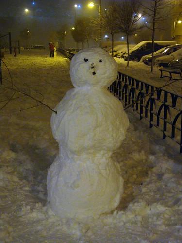 20080109 Arganda nevada (13)