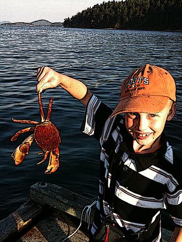 b crab.2
