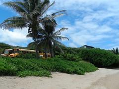 School bus depot on the beach